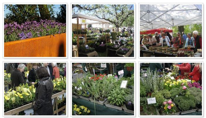 Gartentage-Buxheim - Erdakupunktur