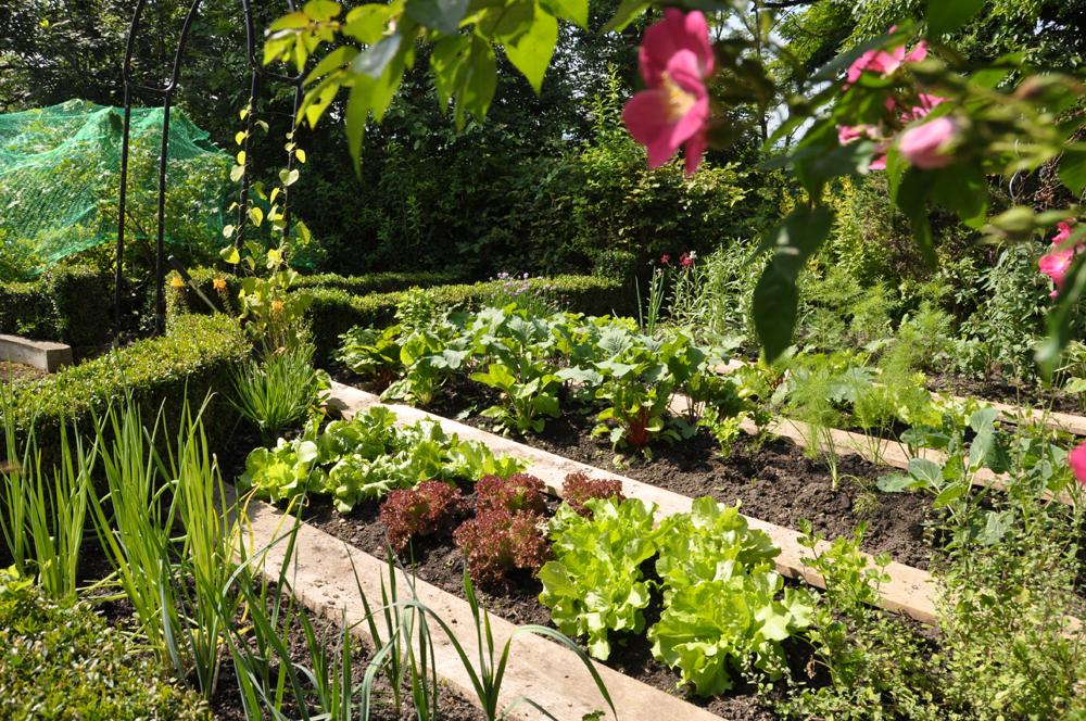 Gartentage-Erdakupunktur-2