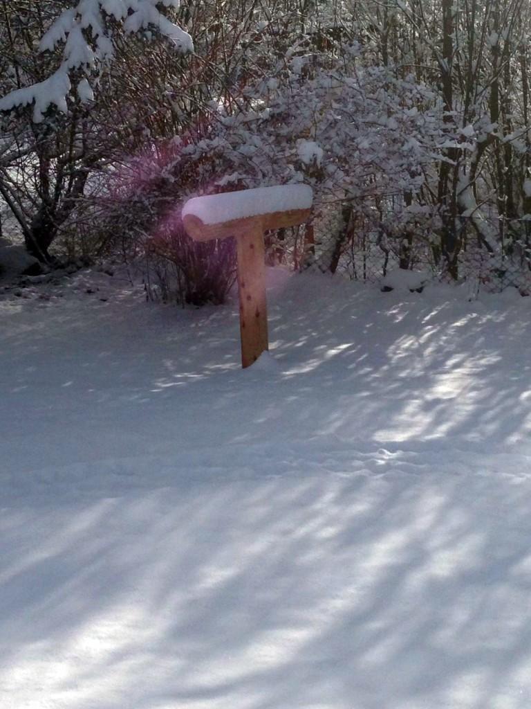 Erdakupunktur_Winterbild-Andrea-Weiler